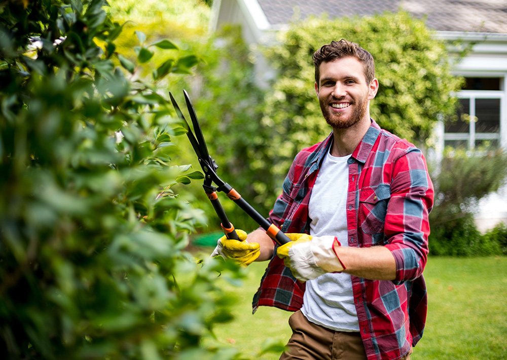 Aide au <br />jardinage
